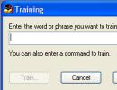 Training option.