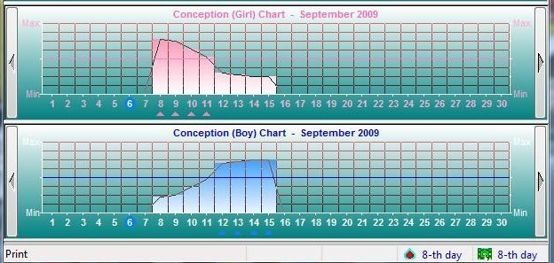 Boy and Girl Conception Chart