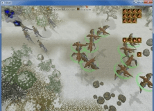 Gameplay Window With Units