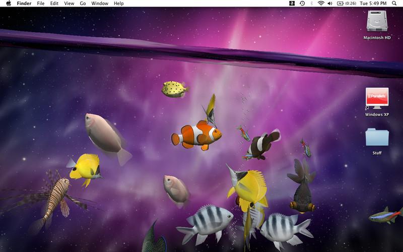 fish aquarium live wallpaper download for windows 7