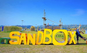 All You Need To Know About Sandboxes