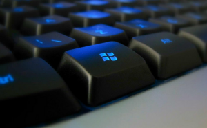 Disable the Windows key shortcuts