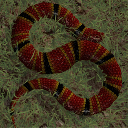SnakeWorld Game