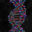 Living Cell 3D Screensaver