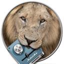 AudialHub Lion Updater