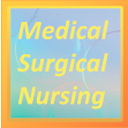 Understanding Medical Surgical Nursing, Fourth Edition
