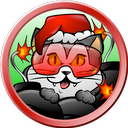 Bomber Cat Holiday