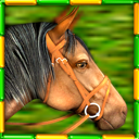 Gallop for Gold Slots for Mac