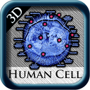 Human Cell 3D