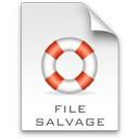 File Salvage