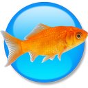 Goldfish 3 Standard Edition