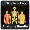 Anatomy Bundle by WAGmob