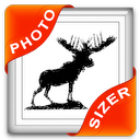 Photosizer