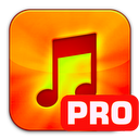 Music Converter Pro - ( Audio , CD ) Lite