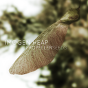 Imogen-Heap_Propeller-Seeds-Air