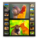 Final Photo Movie Maker Lite