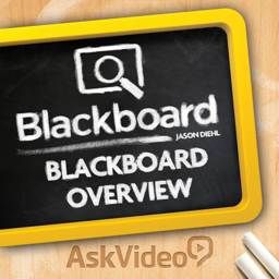 Blackboard Learn 100: Overview