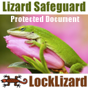 LockLizard Safeguard Viewer
