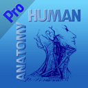 HumanAnatomy
