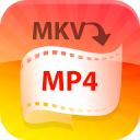 4Video MKV MP4 Converter