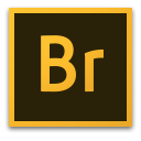 Adobe Bridge 2020