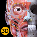 Anatomy 3D Atlas