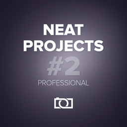 NEAT projects 2 professional