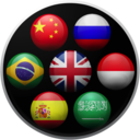 Translate Pro + Widget