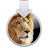 Mac OS X Lion Developer Preview 4