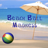 Beach Ball Madness HD