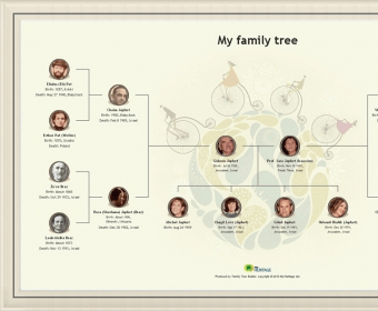 Myheritage Family Tree Builder 8 0 Download Free Myheritage Exe