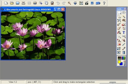 Arcsoft Photostudio Mac Free Download