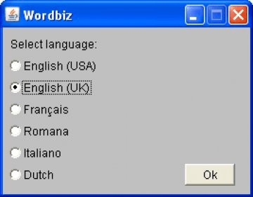 wordbiz pour android