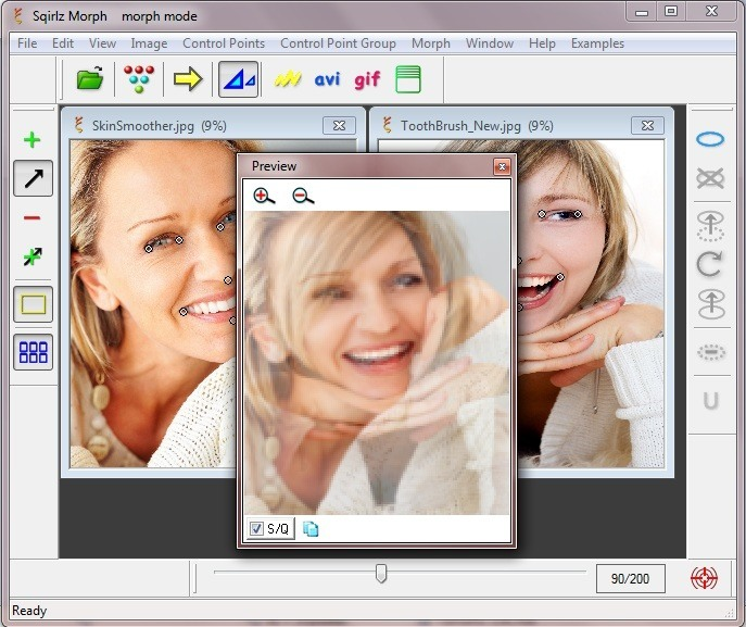Preview Window
