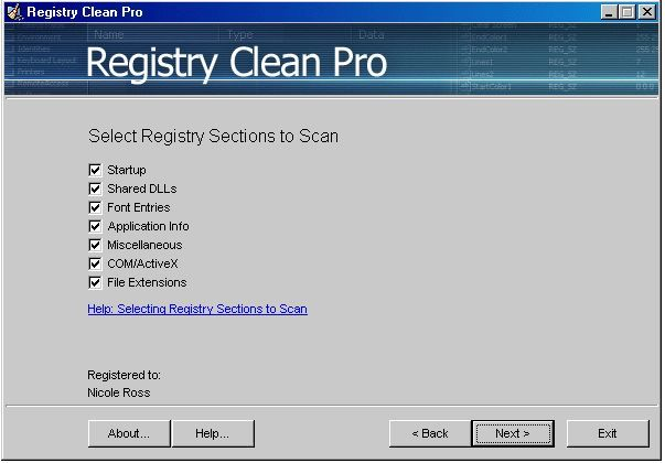Selecting registry sections to scan