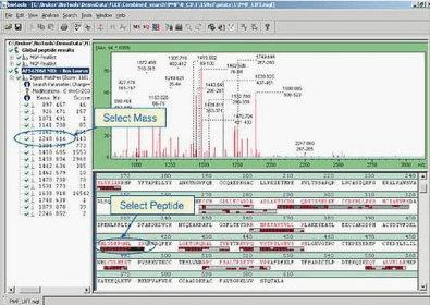 bruker daltonics biotools 3.2