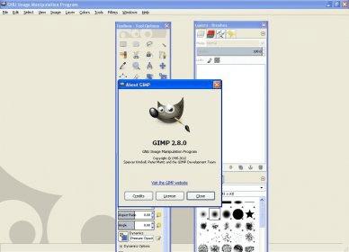 ↠ the gimp 2. 2: pour pc, mac et linux (1cédérom) de julien pons.