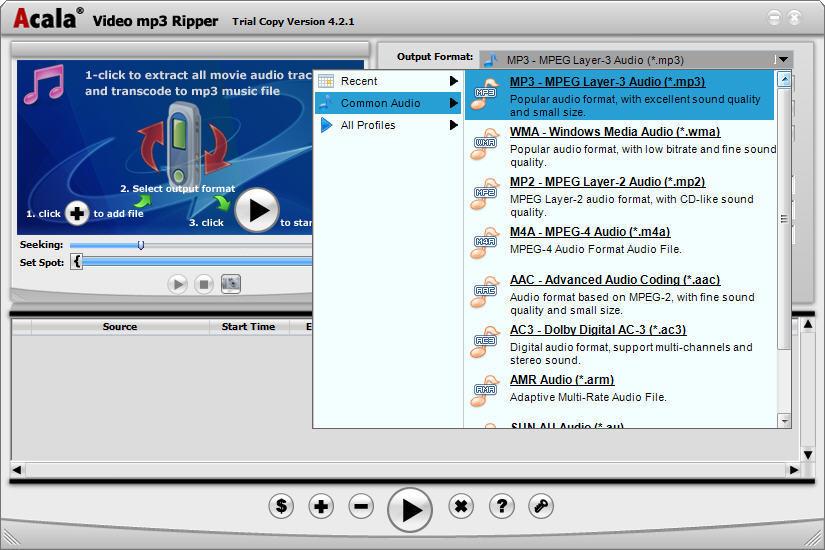 Audio Output Formats