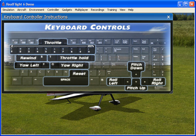RealFlight  Get the software safe and easy