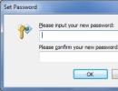 Set Password Window
