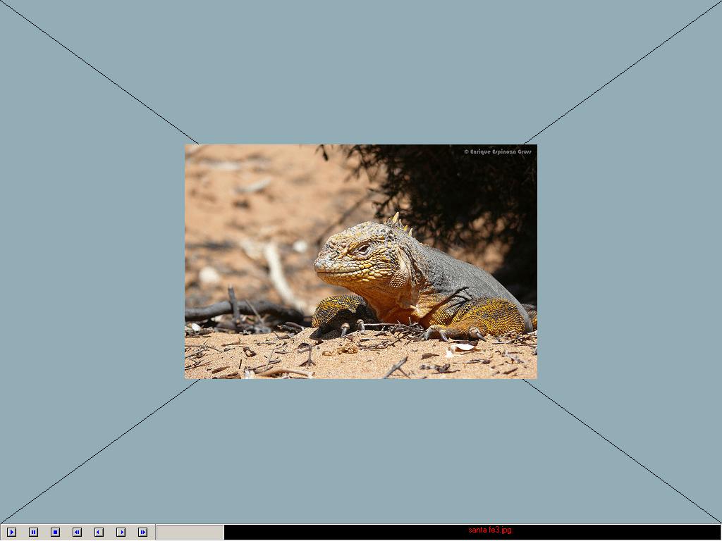 Slideshow Feature