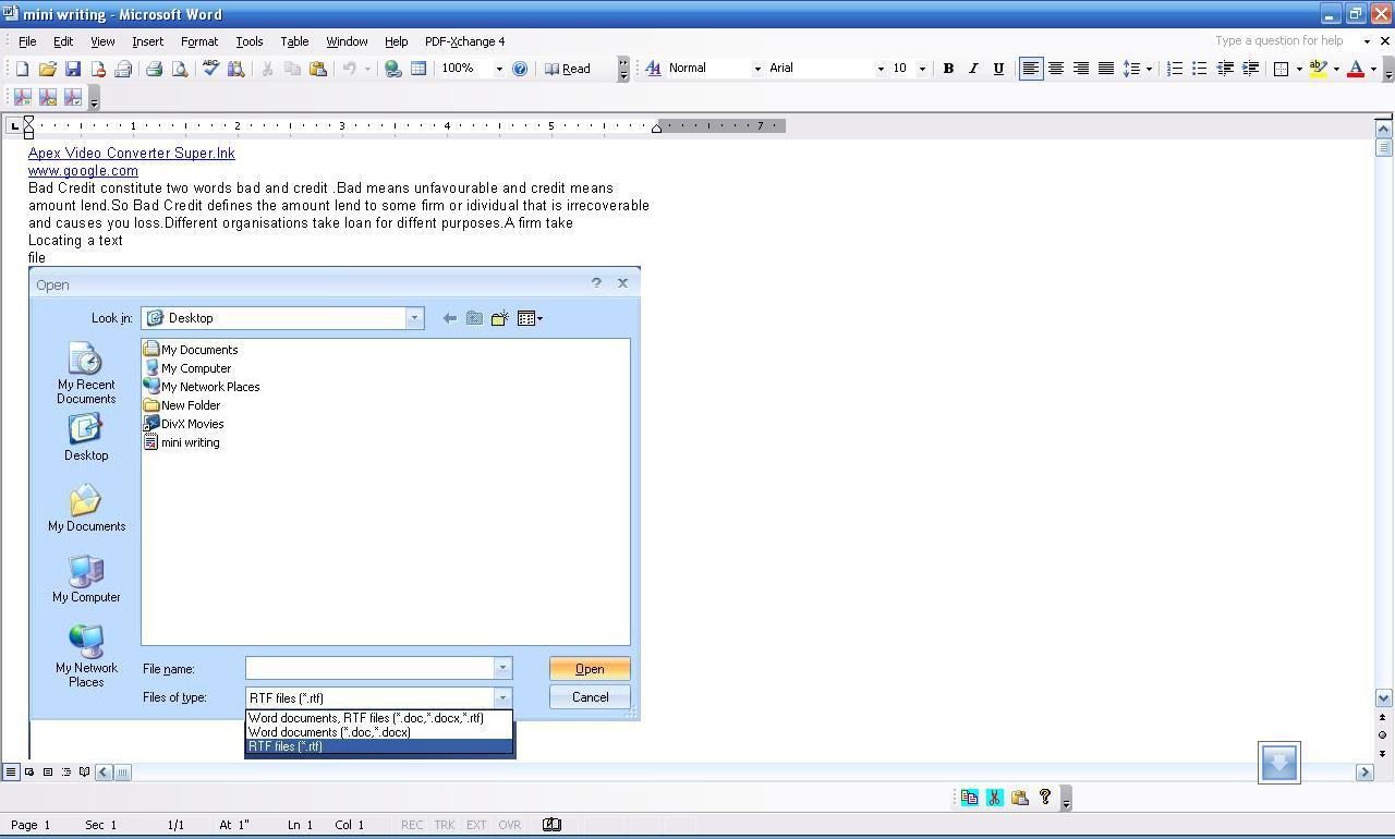 Viewing the file in Word