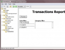 Transactions Report