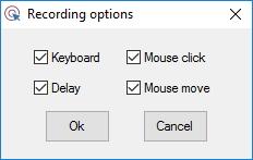Recording Options Window