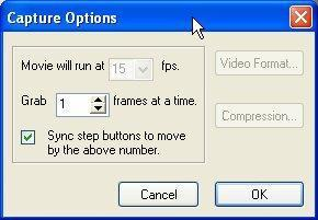 Capture Options