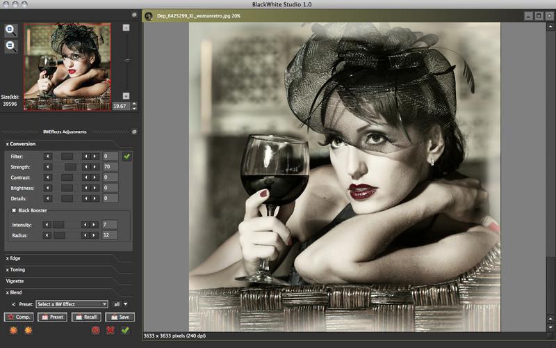 BlackWhite Studio screenshot
