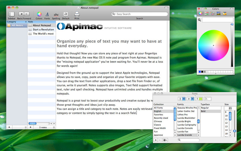 Apimac Notepad screenshot