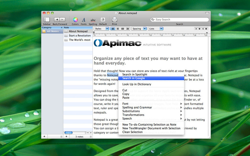 Apimac Notepad screenshot