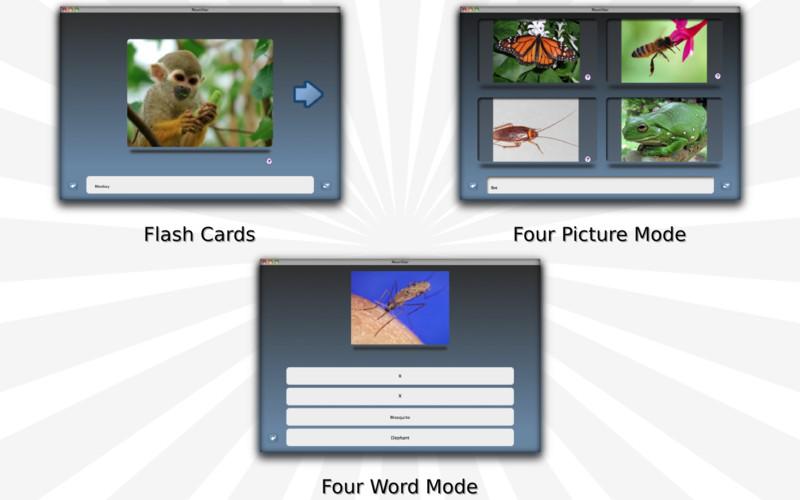 NounStar Language Study - Desktop Edition screenshot